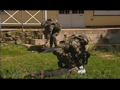 peacekeepers_2.jpg